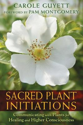 Sacred Plant Initiations: Communicating with Plants for Healing and Higher Consciousness (Paperback)