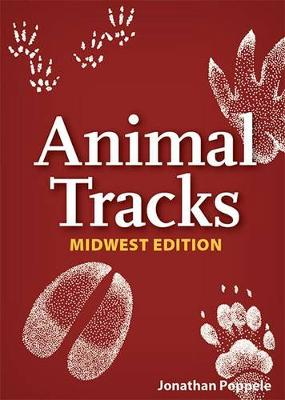 Animal Tracks of the Midwest Playing Cards - Nature's Wild Cards