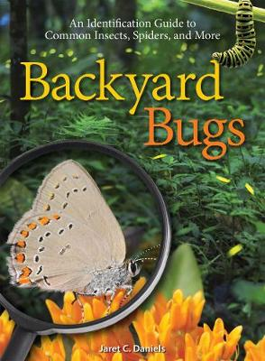 Backyard Bugs: An Identification Guide to Common Insects, Spiders, and More (Paperback)