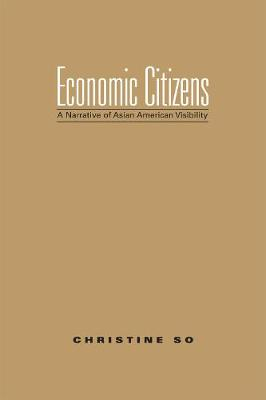 Economic Citizens: A Narrative of Asian American Visibility (Hardback)