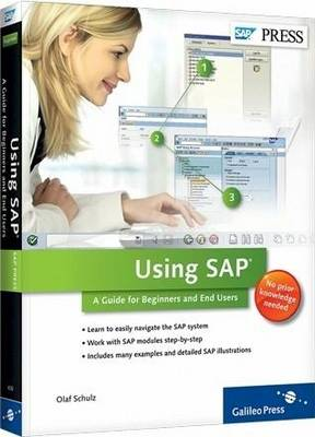 Using SAP: A Guide to Beginners and End Users (Paperback)