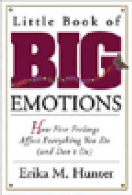 Little Book Of Big Emotions (Paperback)