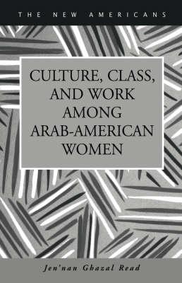 Culture, Class, and Work Among Arab-American Women (Hardback)
