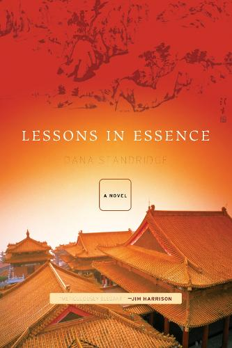 Lessons in Essence: A Novel (Paperback)