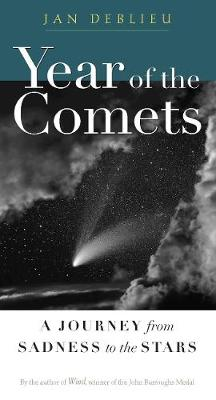 Year of the Comets: A Journey from Sadness to the Stars (Paperback)