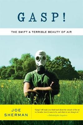 Gasp!: The Swift and Terrible Beauty of Air (Paperback)