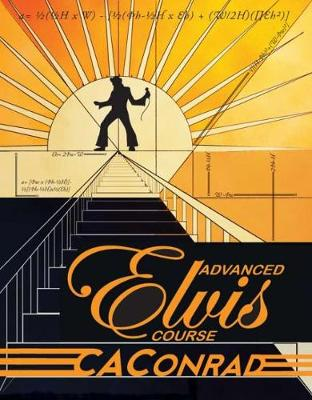 Advanced Elvis Course (Paperback)