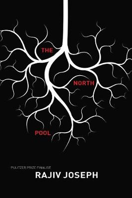 The North Pool (Paperback)
