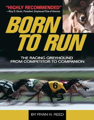 The Born to Run: Racing Greyhound, from Competitor to Companion (Paperback)