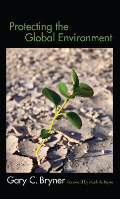Protecting the Global Environment (Hardback)