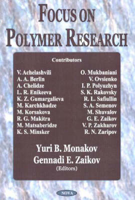 Focus on Polymer Research (Hardback)
