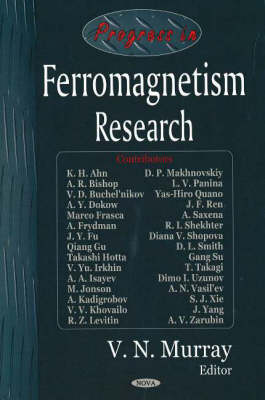 Progress in Ferromagnetism Research (Hardback)