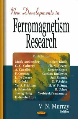 New Developments in Ferromagnetism Research (Hardback)
