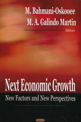 Next Economic Growth: New Factors & New Perspectives (Hardback)