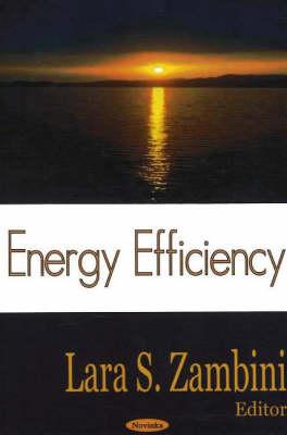Energy Efficiency (Hardback)