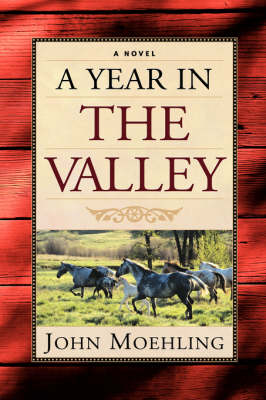 A Year in the Valley (Paperback)