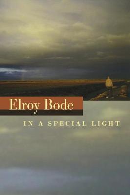 In a Special Light (Hardback)