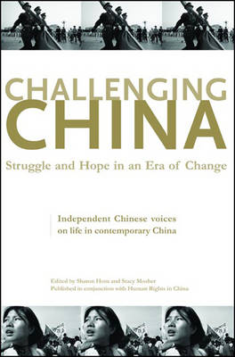 Challenging China: Struggle and Hope in an Era of Change (Hardback)