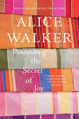 Possessing the Secret of Joy: A Novel (Paperback)