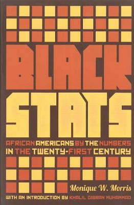 Black Stats: African Americans by the Numbers (Paperback)