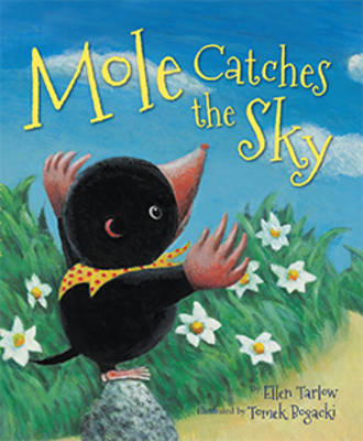 Mole Catches the Sky (Paperback)