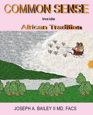 Common Sense Inside African Tradition (Paperback)