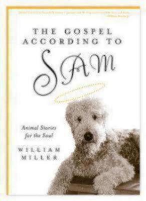 Gospel According to Sam (Hardback)