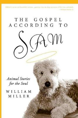 The Gospel According to Sam: Animal Stories for the Soul (Paperback)