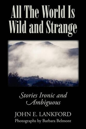 All the World Is Wild and Strange: Stories Ironic and Ambiguous (Paperback)
