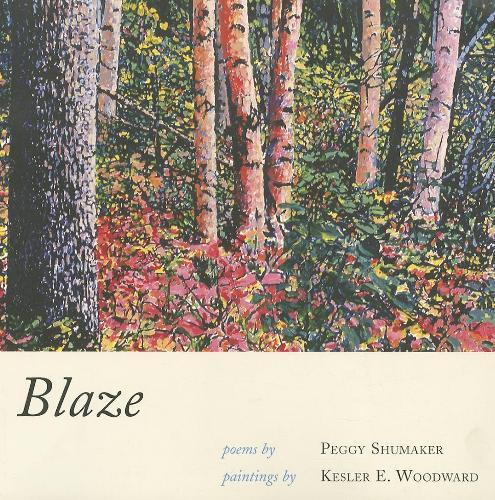 Blaze (Paperback)