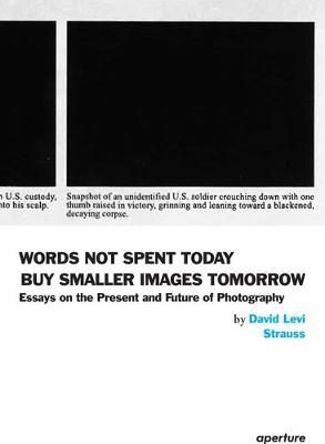 Words Not Spent Today Buy Smaller Images Tomorrow: Essays on the Present and Future of Photography (Paperback)