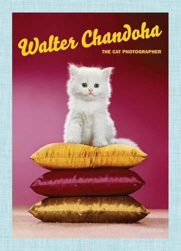 Walter Chandoha: The Cat Photographer (Hardback)