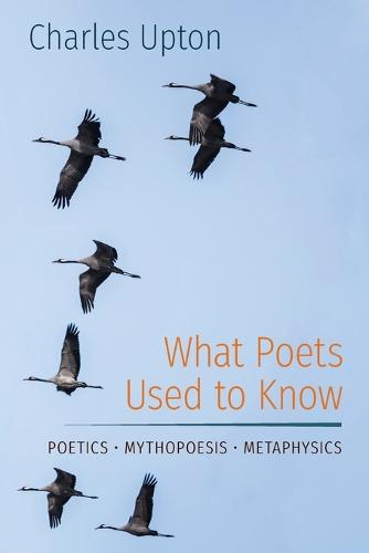 What Poets Used to Know: Poetics - Mythopoesis - Metaphysics (Paperback)