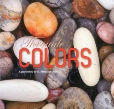 Through Colors (Hardback)