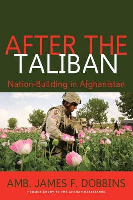 After the Taliban: Nation-Building in Afghanistan (Hardback)