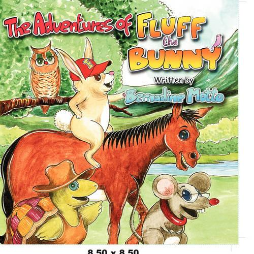 The Adventures of Fluff the Bunny (Paperback)