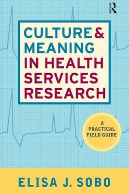 Culture and Meaning in Health Services Research: An Applied Approach (Paperback)