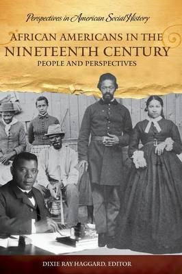 African Americans in the Nineteenth Century: People and Perspectives - Perspectives in American Social History (Hardback)