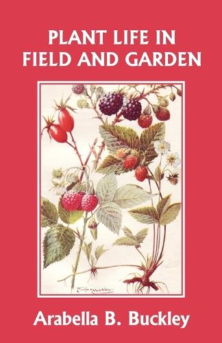 Plant Life in Field and Garden (Yesterday's Classics) (Paperback)