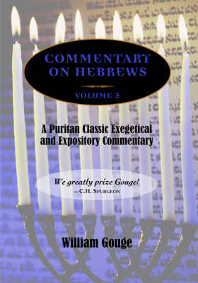 Commentary on Hebrews: Exegetical and Expository - Vol. 2 (PB) (Paperback)
