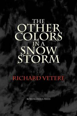 The Other Colors in a Snow Storm (Paperback)