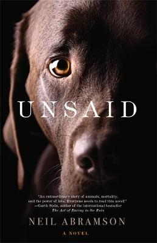 Unsaid (Paperback)