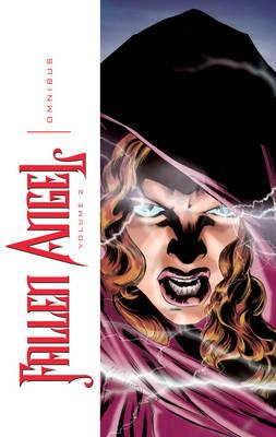 Fallen Angel Omnibus Volume 2 (Paperback)