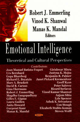 Emotional Intelligence: Theoretical & Cultural Perspectives (Hardback)