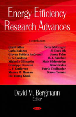 Energy Efficiency Research Advances (Hardback)