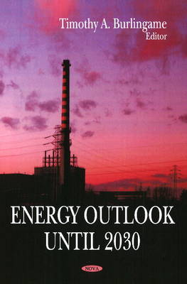 Energy Outlook Until 2030 (Hardback)