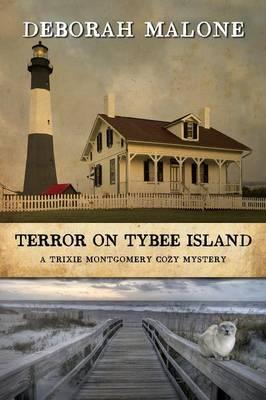 Terror on Tybee Island (Paperback)