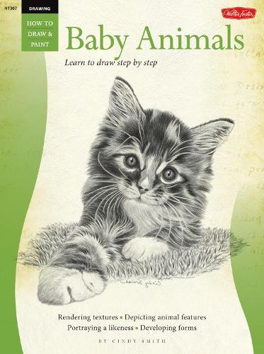 Drawing: Baby Animals: Learn to Draw Step by Step (Paperback)