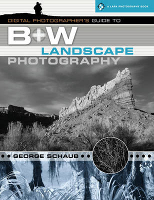 Digital Photographer's Guide to B+w Landscape Photography - Lark Photography (Paperback)