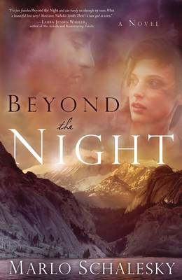 Beyond the Night (Paperback)